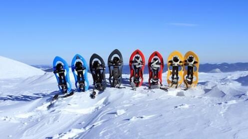 Ruta raquetas de nieve por 23,90€