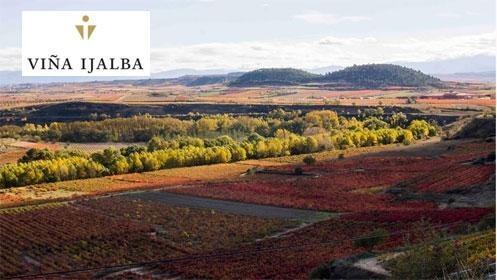 Visita viñedos + bodega + cata de vinos en Viña Ijalba